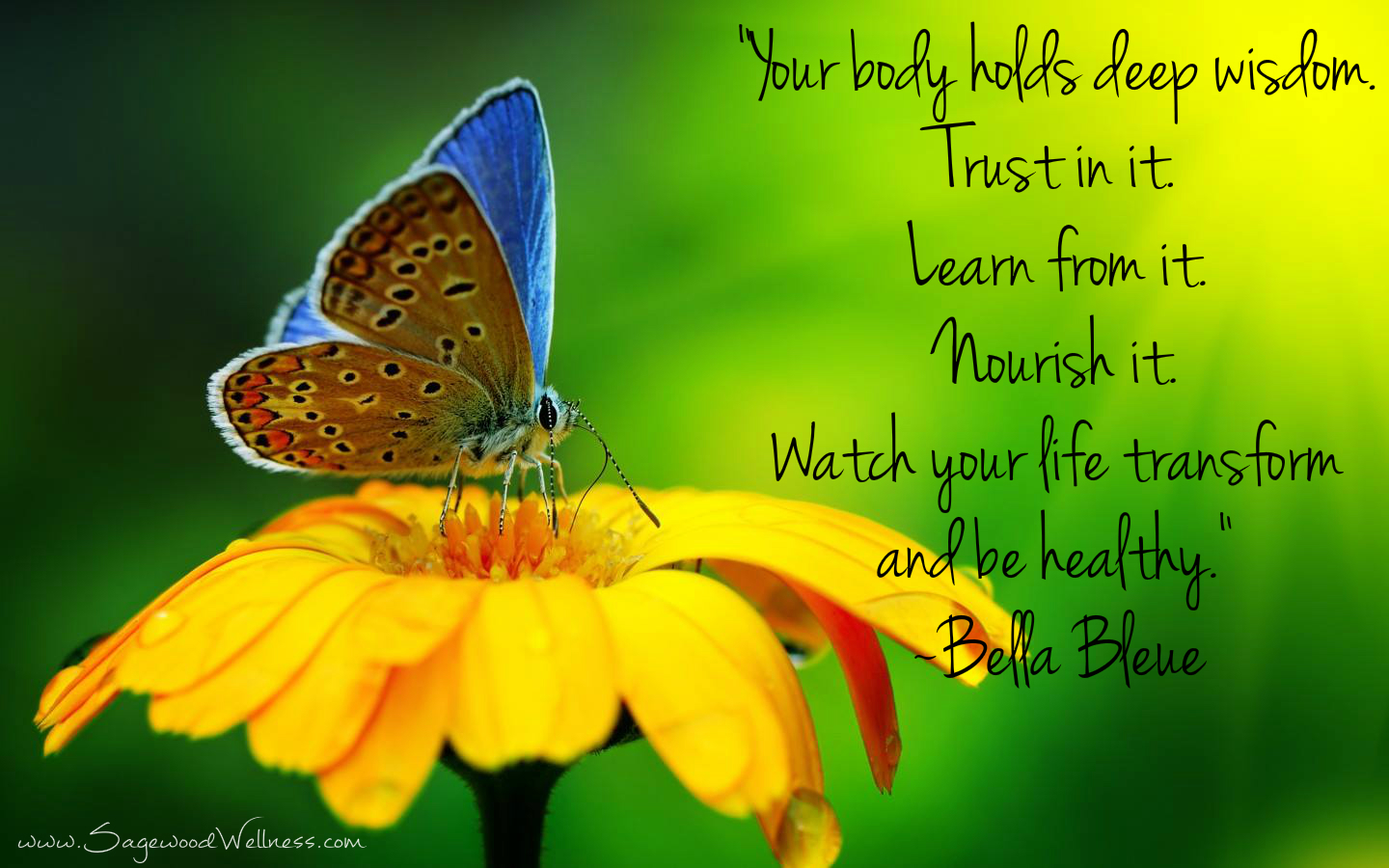 Image result for quotes for health
