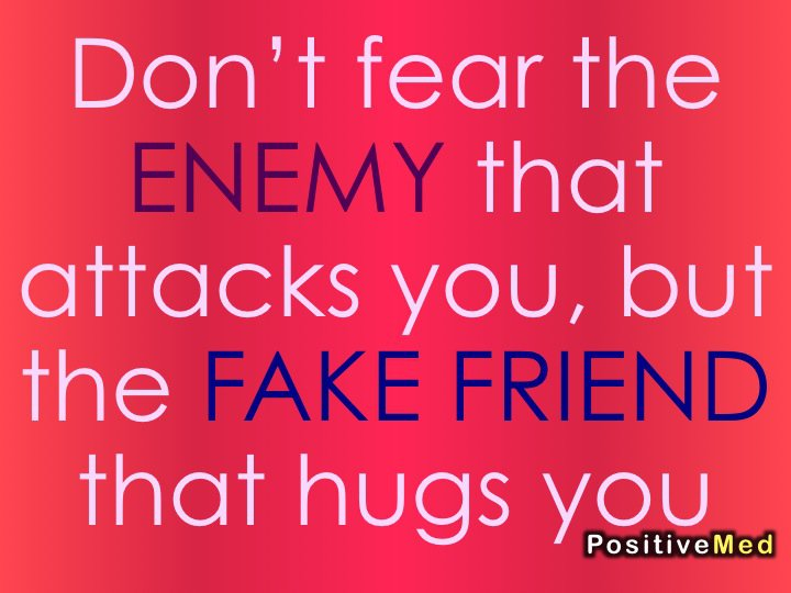 Snakes And Fake Friends Quotes. QuotesGram