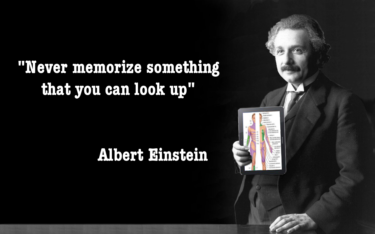 albert women Ian morris, contributor opinions expressed by forbes contributors are their own it's hard not to love einstein he was a scientist who made predictions so ridiculously accurate that they.