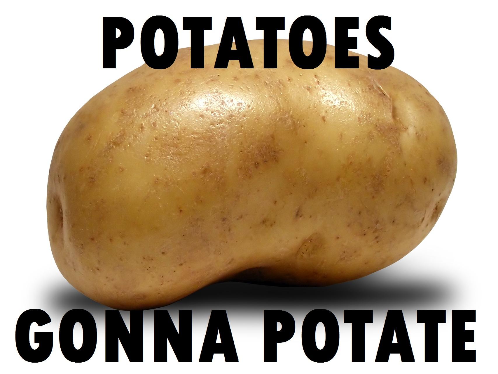 Potatoes Quotes Quotesgram