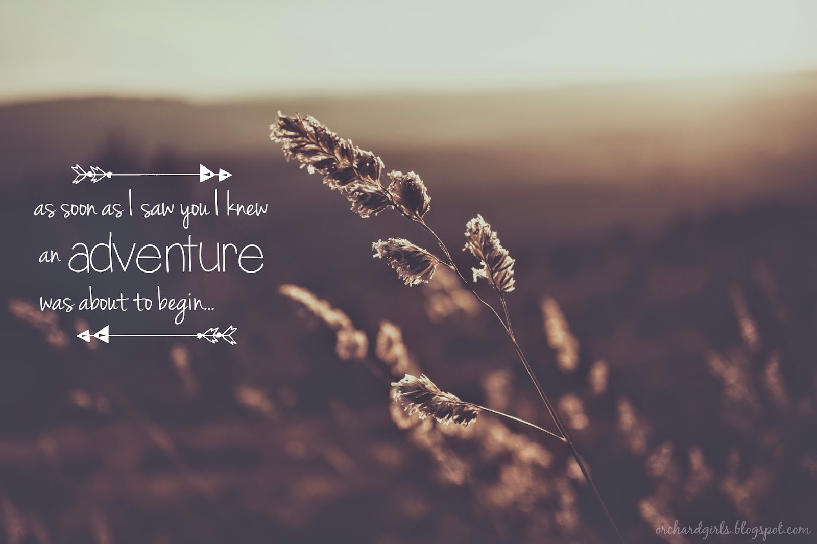 Adventure Quotes Quotesgram: Amazing Adventure Quotes. QuotesGram