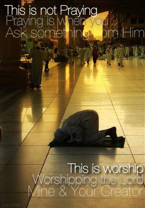 Violent Passage From Koran