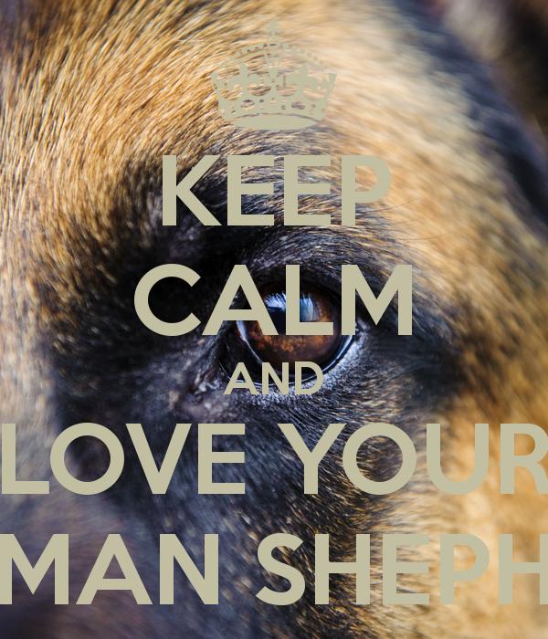 Good Morning My Love In German : German shepherd missing you quotes quotesgram