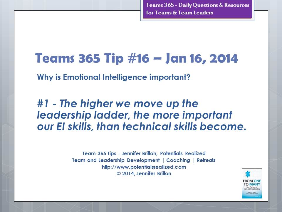 daniel goleman emotional intelligence pdf