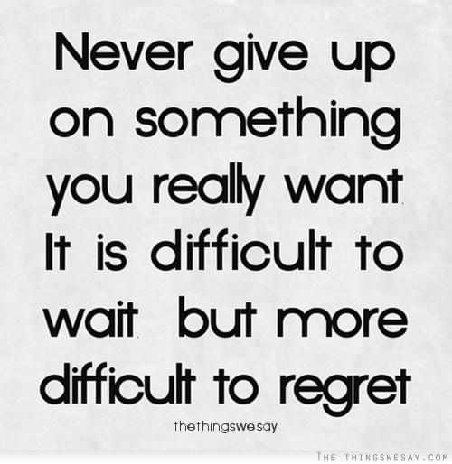 Quotes About Persistence And Not Giving Up