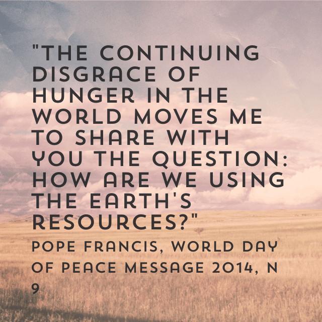 Teach Peace Quotes: Pope Francis Quotes Catholic Social Teachings. QuotesGram
