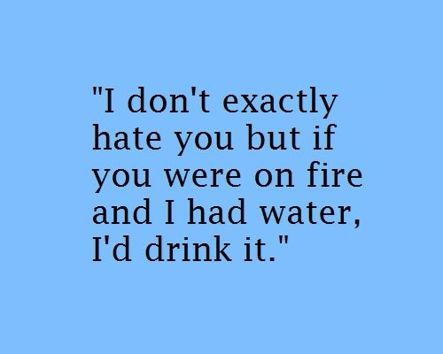 I Hate You Like Quotes: I Dont Hate You Quotes. QuotesGram