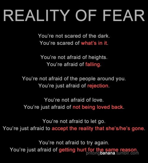 Quotes About Being Afraid To Fall In Love: Quotes Being Scared To Love. QuotesGram