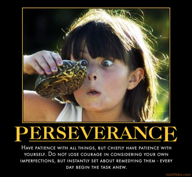 Persistence Motivational Quotes: Funny Persistence Quotes. QuotesGram