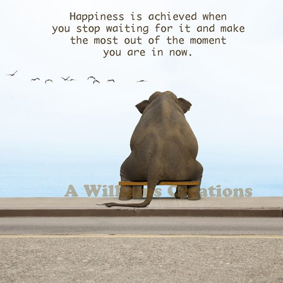 Cute quotes about life and love and happiness quotesgram - Inspirational Quotes Elephant Quotesgram