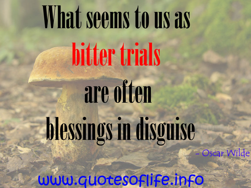 Quotes About Trial In Life: Quotes About Trials In Life. QuotesGram
