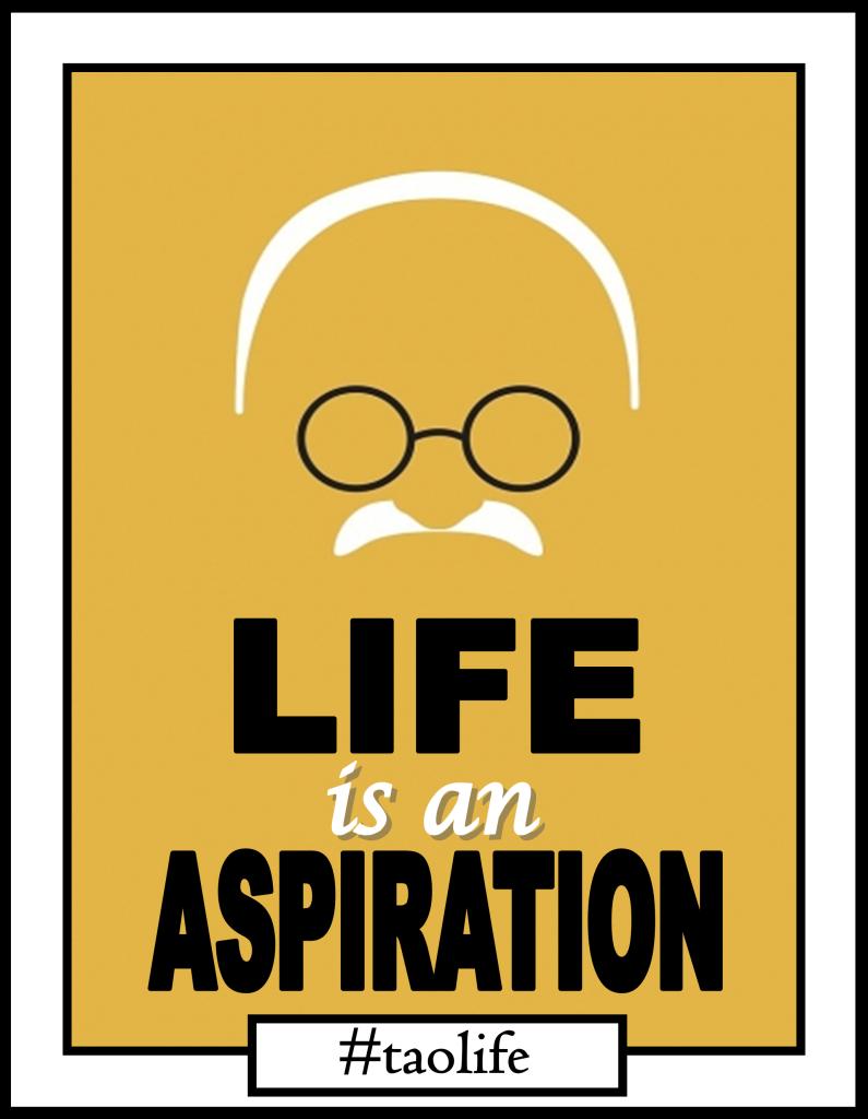 life aspirations quotes  quotesgram
