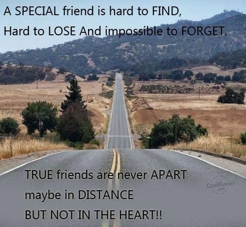 Long Distance Friendship Quotes And Sayings In Hindi: Cute Long Distance Friendship Quotes. QuotesGram