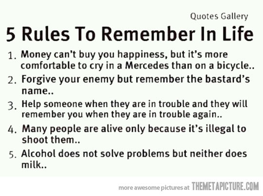Funny Dumb Quotes Life: Funny Quotes About Life Lessons. QuotesGram