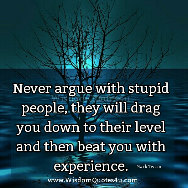Arguing With Stupid People Quotes. QuotesGram