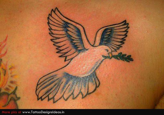 Фото тату голубь с оливковой ветвью
