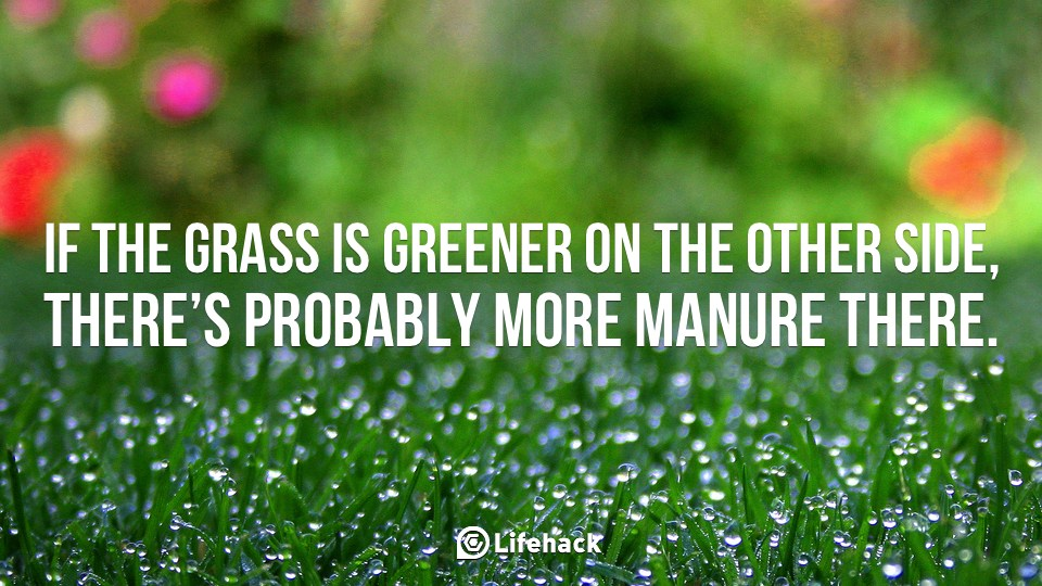 Grass Is Always Greener Quotes: Grass Is Greener Quotes. QuotesGram
