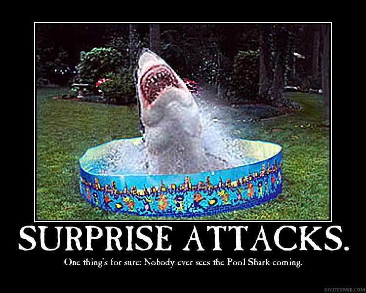 Shark Attack Funny Quotes Quotesgram