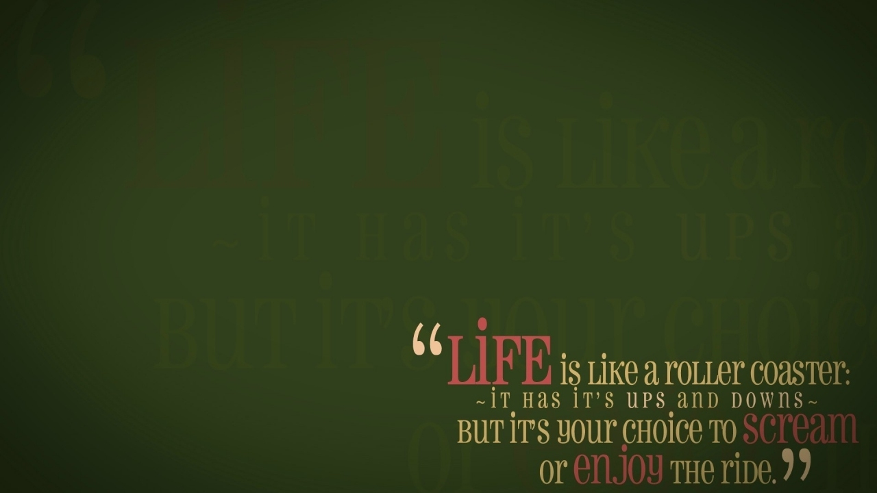 Quotes About Life Is Like A Roller Coaster. QuotesGram