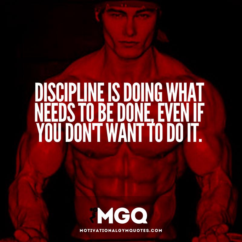 Discipline Motivational Quotes Quotesgram