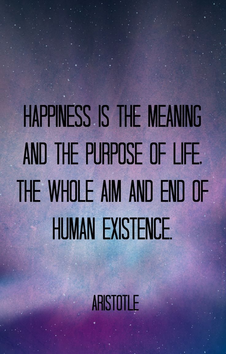 aristotles definition of true happiness In his nicomachean ethics, the philosopher aristotle tries to discover what is 'the supreme good for man', that is, what is the best way to lead our life and give it meaning for aristotle, a .