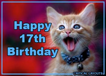 Happy 17th Birthday Quotes Funny Quotesgram