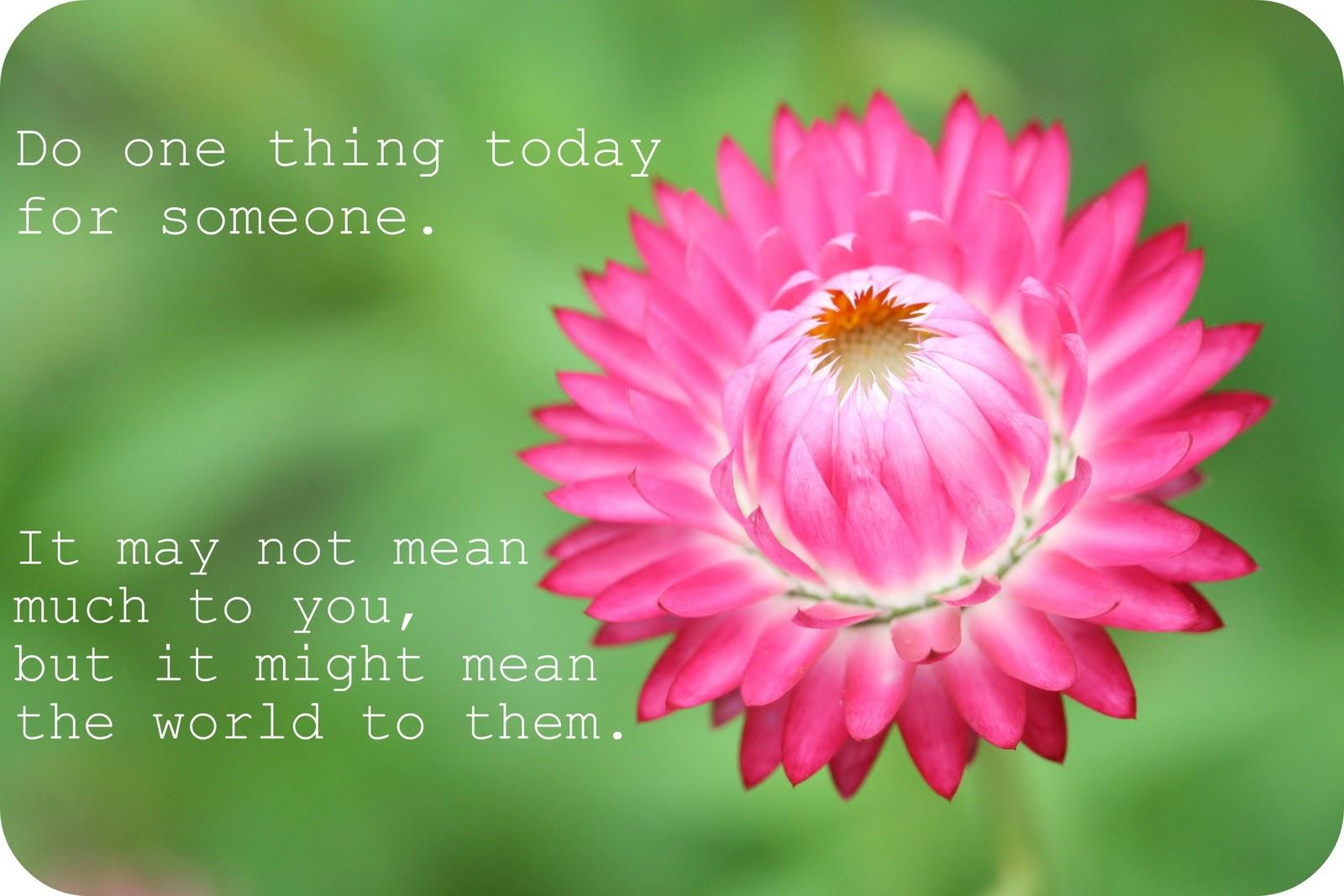 Humorous Quote Garden Quotes Quotesgram
