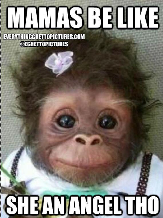 Monkey Animal Quotes. QuotesGram