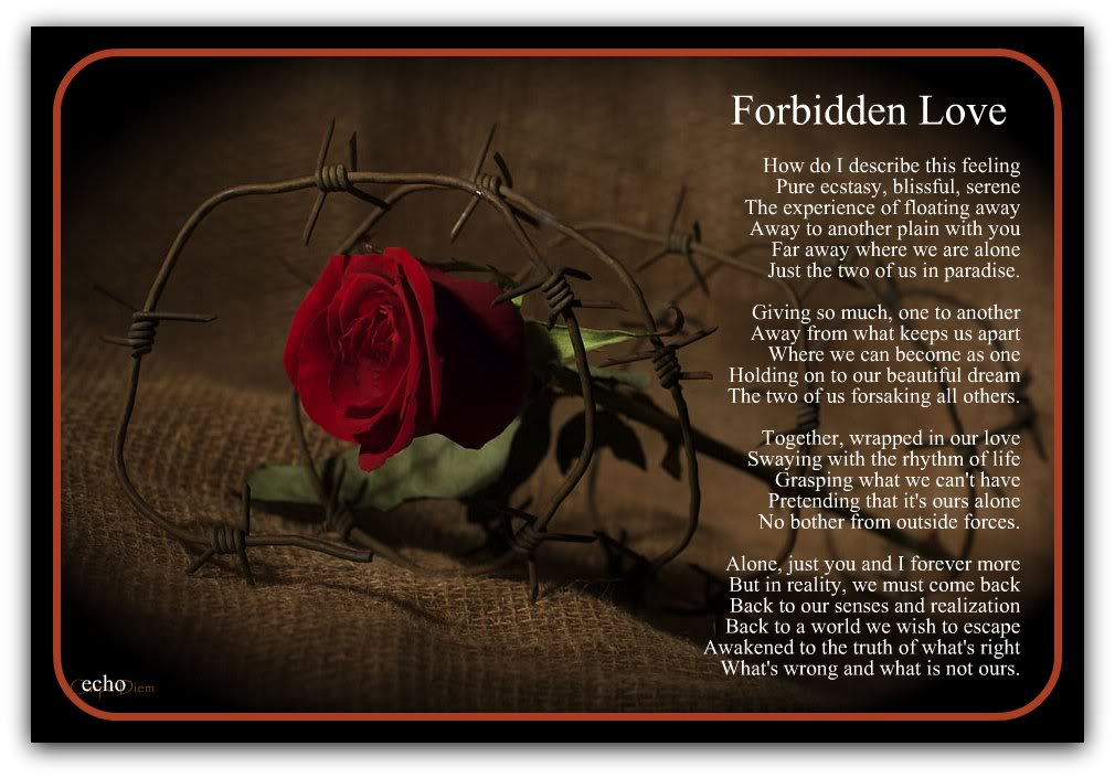Forbidden Love Quotes For Him Quotesgram