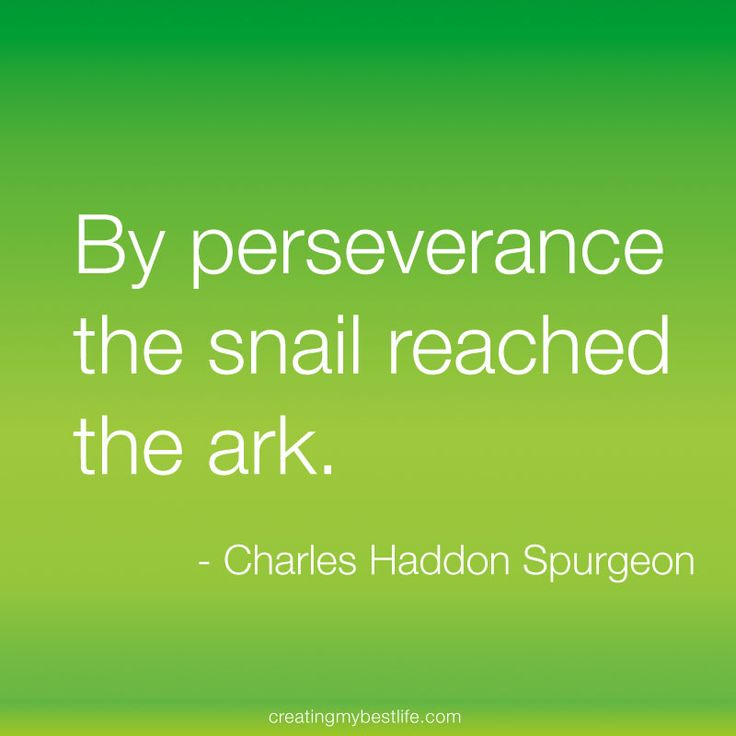 Persistence Motivational Quotes: Spurgeon Quotes On Love. QuotesGram