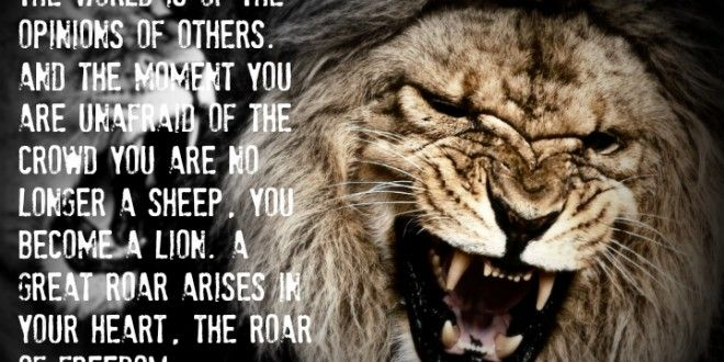 Lioness Courage Quotes. QuotesGram