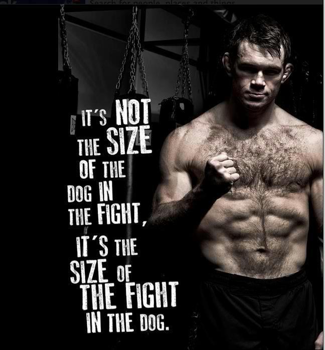 Ufc Boxing Quotes. QuotesGram