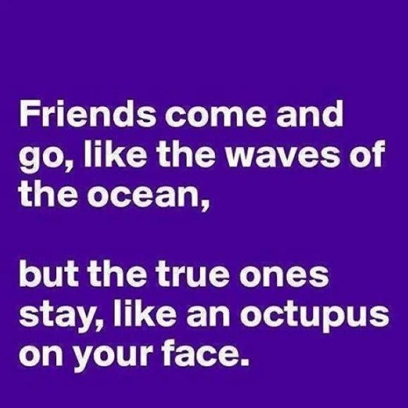 Sad I Miss You Quotes For Friends: Funny Friendship Quotes True. QuotesGram