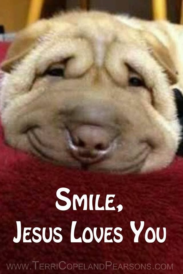 Smile Jesus Loves You Quotes. QuotesGram