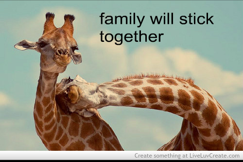 Quotes About Family Sticking Together: Quotes About Couples Sticking Together. QuotesGram