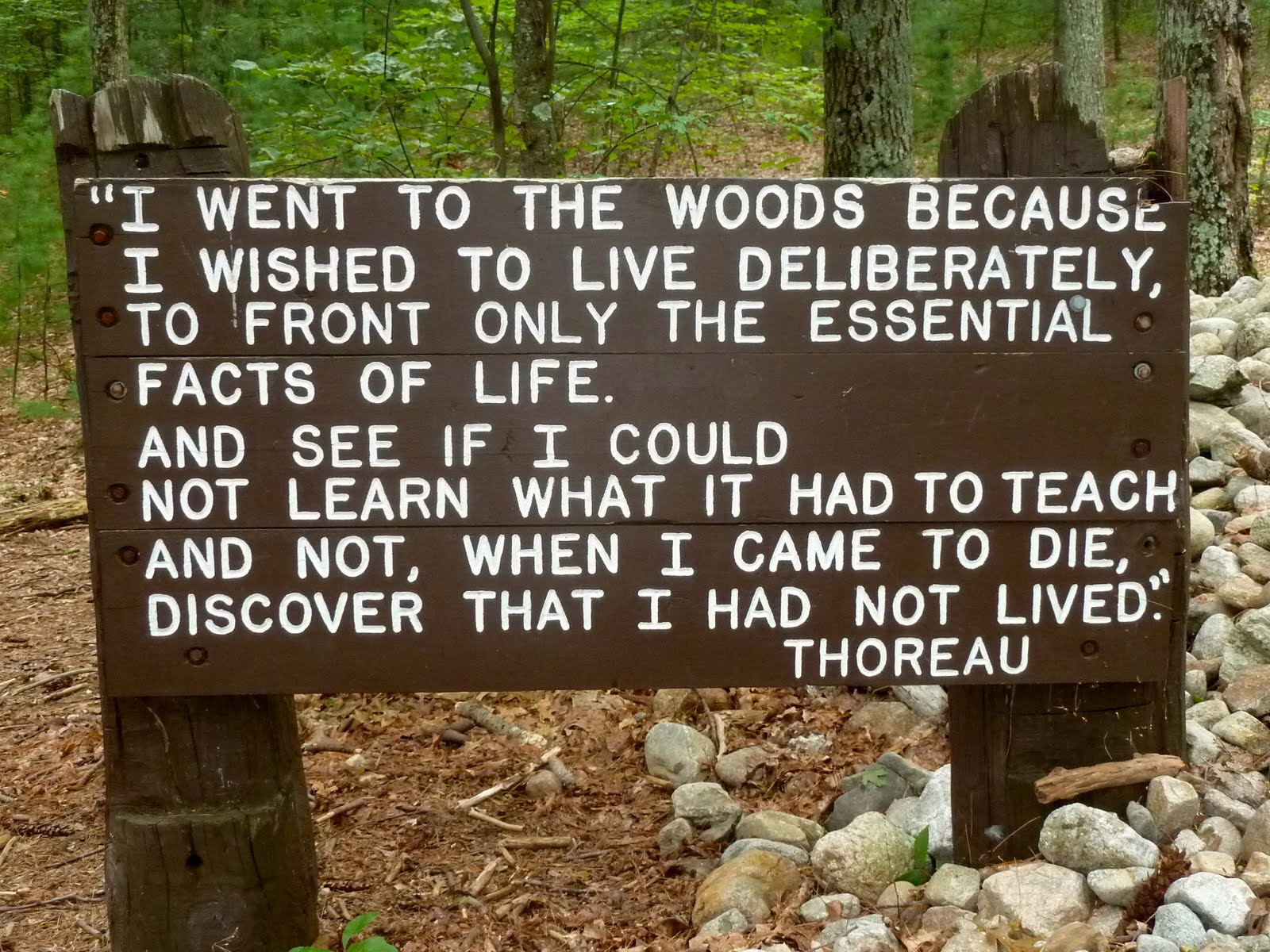 thoreau and individuality Read this english essay and over 88,000 other research documents thoreau and individuality it is difficult to obtain true individuality people always make an attempt to define themselves.