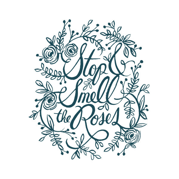 Stop And Smell The Roses Quotes Quotesgram