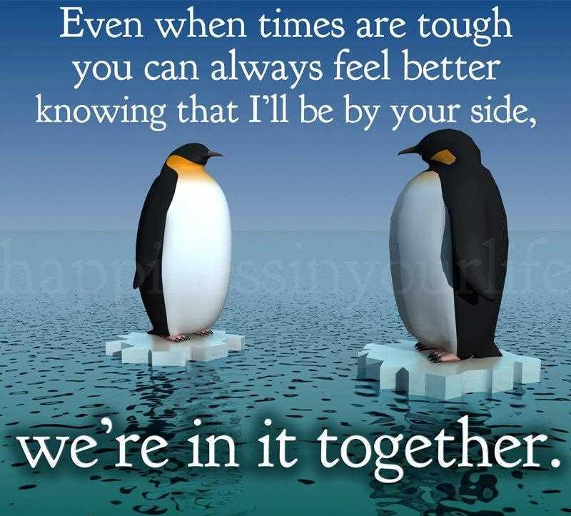 Tough Times Quotes. QuotesGram