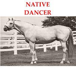 native_dancer_greeting_cards.jpg?height=250&width=250&padToSquare=true
