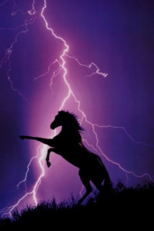 Pictures of horses and lightning pictures 2