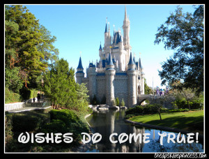 Disney wishes do come true, wish for Disney, wish for Disney World ...