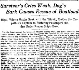 Remembering the Titanic's dogs a century later