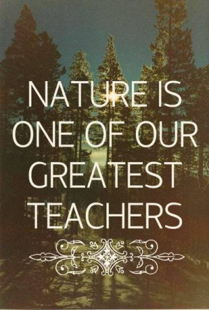 nature #pagan #witch #paganism #wicca #wood #forest #world #respect