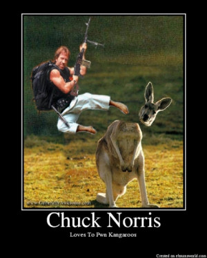 Chuck Norris Demotivational!