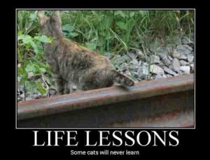 Life_lessons