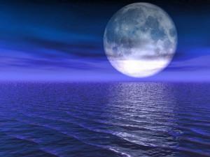 romantic-ideas-moonlite-walk