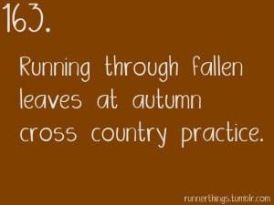 ... 1553: Running through fallen leaves at autumn cross country practice