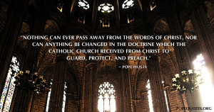 nothing-can-ever-pass-away-from-the-words-of-christ-pope-pius-ix.jpg