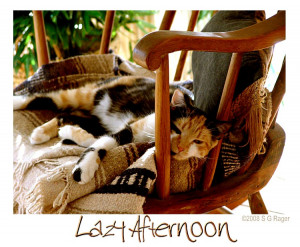 Samantha's Lazy Afternoon750