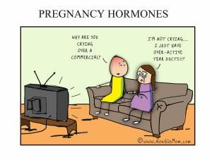 pregnancy-hormones(pp_w1200_h911).jpg